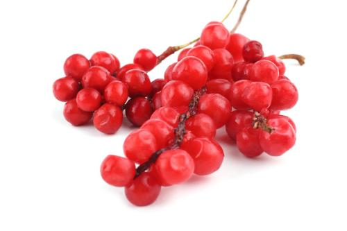 CH 유기농 오미자추출물